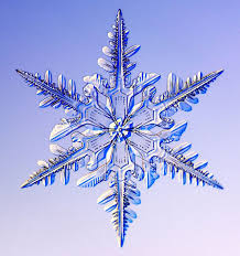 real snowflake. Unique Snowflake Photographs Of Real Snowflakes Reveal An Even More Amazing Variety Than You  Might Have Expected With Real Snowflake