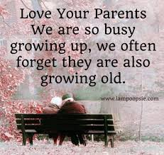 Parents Quotes From Daughter Interesting I Love My Parents Quotes Pinterest Hover Me