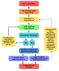 Science Project Chart Work Steps Of The Scientific Method