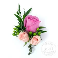 Image result for pictures of single roses