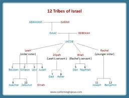 Chronicles Genealogy Chart Family Tree Chart Of Jacob Et Al The Bible Project