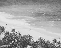 vintage surf photography hawaii print black and white beach photo retro wall art hawaii surfers palm trees beach landscape