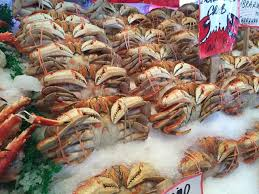 Clayton Seafood Market LLC ...