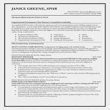 Classic Resume Example Best Social Work Resume Template Beauteous Classic Resume Template