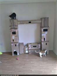 homemade cat tree plans
