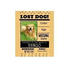 Dog Flyer Template Free Lost Dog Reward Template Lost Dog Flyer Template Missing Dog Flyer