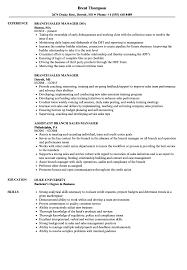 Branch Sales Manager Resume Samples Velvet Jobs