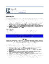 Samples | New York Resume Writing Service | Resumenewyork.com