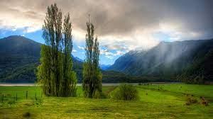 New Zealand Landscape Hd - 1920x1080 ...