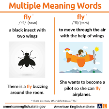 Multiple Meaning Words: Fly | English Language, ESL, EFL, Learn ...