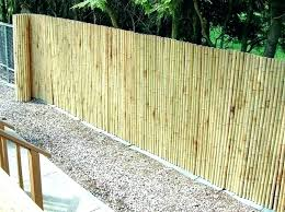 chain link fence privacy screen. Amazing Chain Link Fence Privacy S7519697 For Bamboo Fencing Adds Screen
