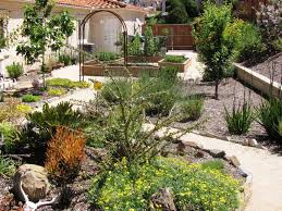 Houzz Backyards landscaping desert landscaping ideas for space outside your home 6309 by uwakikaiketsu.us