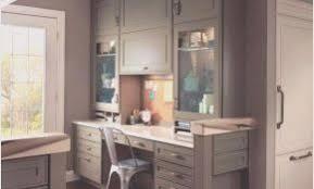glass kitchen cabinet doors. Modren Glass Glass For Kitchen Cabinet Doors Only Inspirational  Lovely And