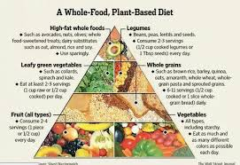 Plant Based Diet Chart Wfpb Food Pyramid In 2019 Vegan Food Pyramid Plant Based