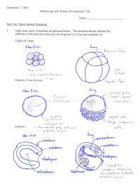 page 1 page 1 jpg on mendelian genetics worksheet