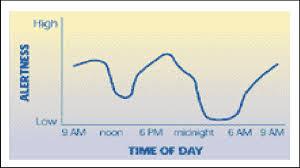 A Graph Showing An Alertness Circadian Rhythm Download