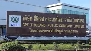บริษัท ซีพีเอฟ ประเทศไทย จำกัด มหาชน - YouTube