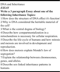 dna and inheritance essay write a paragraph essa com dna and inheritance essay write a 3 paragraph essay about one of the following inheritance topics