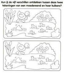 Kleurplaat Cyclus Kikker Van Kikkervisje Tot Kikker Simple Home