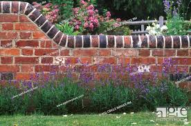 old brick wall in country garden
