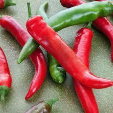 garden salsa hot pepper plants