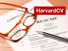 Create Resume From Linkedin Profile Design And Edit Your Cv Cover Letter And Linkedin Profile By Harvardcv