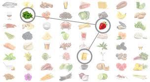 Science Behind Foodpairing