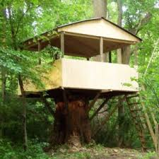 basic tree house pictures. This Style Of Treehouse Is Pretty Basic But Still Creates A Place For Kids To Make Memories. It Has 12×12 Pressure Treated Floor, In Case Bit Snow Tree House Pictures R