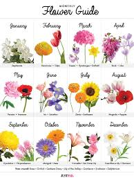 Month Flowers Chart A Visual Guide To Wedding Flowers By Month Birth Flower