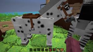 Minecraft Mo Creatures Horse Breeding Chart How To Tame A