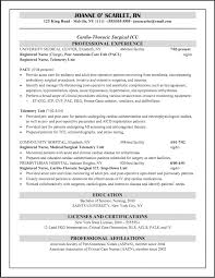 Template Resume Examples For Registered Nurse Templates