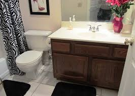 Small Picture small bathroom renovation ideas on a budget Bathroom Remodel Cost