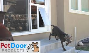 pet door insert for extra large dogs pet door s utah