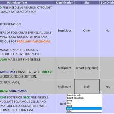 Sample Chart Review Forms Sample Chart Review Form Used By Abstractors To Classify The