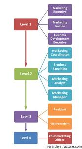 Executive Hierarchy Chart Marketing Career Hierarchy Accounting Career Career