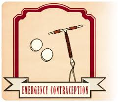 Can You Take Plan B With Regular Birth Control Birth Control Bingo Emergency Contraception Scarleteen
