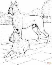 Small Picture Dogs Coloring Pages Dog Coloring Pages For Kids Birthday Party And