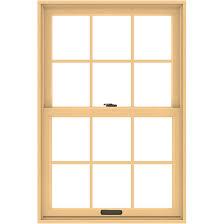 200 Series Double Hung Window