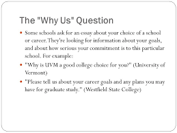 future career goals essay essay about your career goals