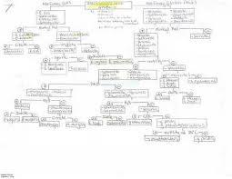 Dichotomous Flow Chart Microbiology Flow Chart Microbiology Unknown My Favorite Flow Chart So