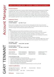 Logo Company Name Profile It Project Manager Job Description ...