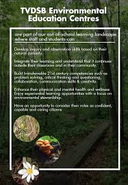 Philosophical Critical Environmental Education  a proposal in a searc    The Nature of Cities Engaging families in environmental education  How action  critical thinking   and social learning can foster change