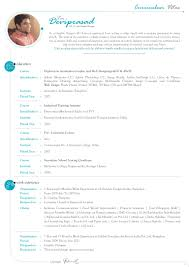 Curriculum Vitae 8 Years Of Experience In Ux Ui And Graphic Desig