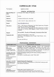 Example Software Engineer Resume Free Software Programmer Resume