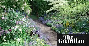 Gardening For Beginners The Cheatu0027s Guide To Herbaceous Borders  Life And Style The Guardian