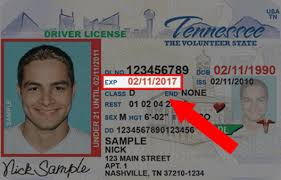 how to get a drivers license renewal in tn