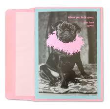 black pug birthday card black pug with boa funny birthday cards