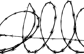 Barb Wire Clipart    P