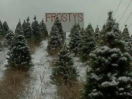 Facebook/Frosty's Pines Christmas Trees