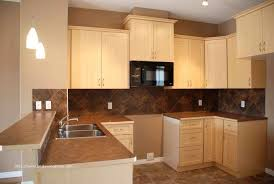 custom kitchen cabinets knoxville tn new unique unfinished kitchen cabinets knoxville tn